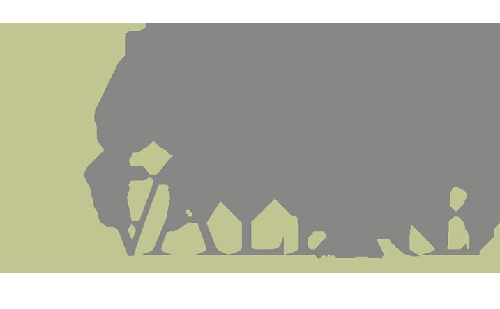 Valēre Logo